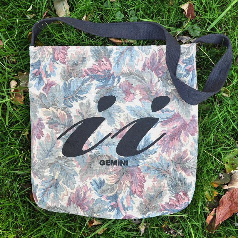 Gemini bag 4